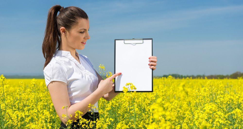 Diagnostyka Organizmu Biorezonansem w Gorzowie